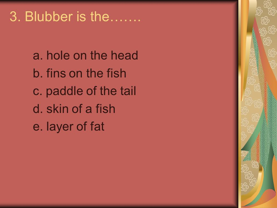 3. Blubber is the……. a. hole on the head b. fins on the fish