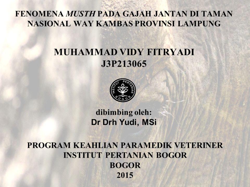 FENOMENA MUSTH PADA GAJAH JANTAN DI TAMAN NASIONAL WAY KAMBAS PROVINSI LAMPUNG MUHAMMAD VIDY FITRYADI J3P213065 dibimbing oleh: Dr Drh Yudi, MSi