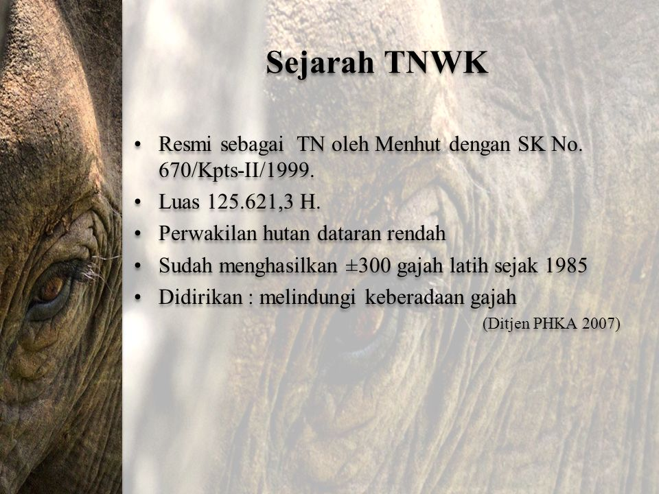 Sejarah TNWK Resmi sebagai TN oleh Menhut dengan SK No. 670/Kpts-II/1999. Luas 125.621,3 H. Perwakilan hutan dataran rendah.