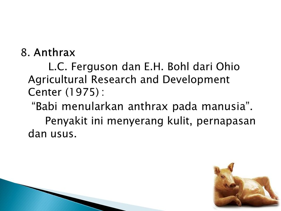 Babi menularkan anthrax pada manusia .