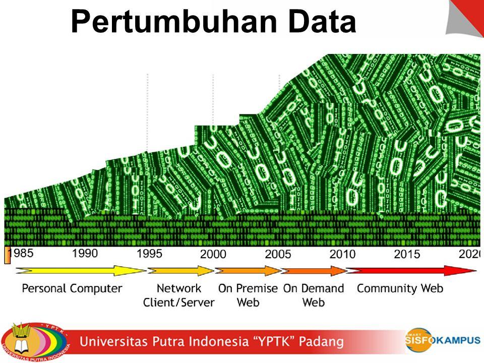Pertumbuhan Data