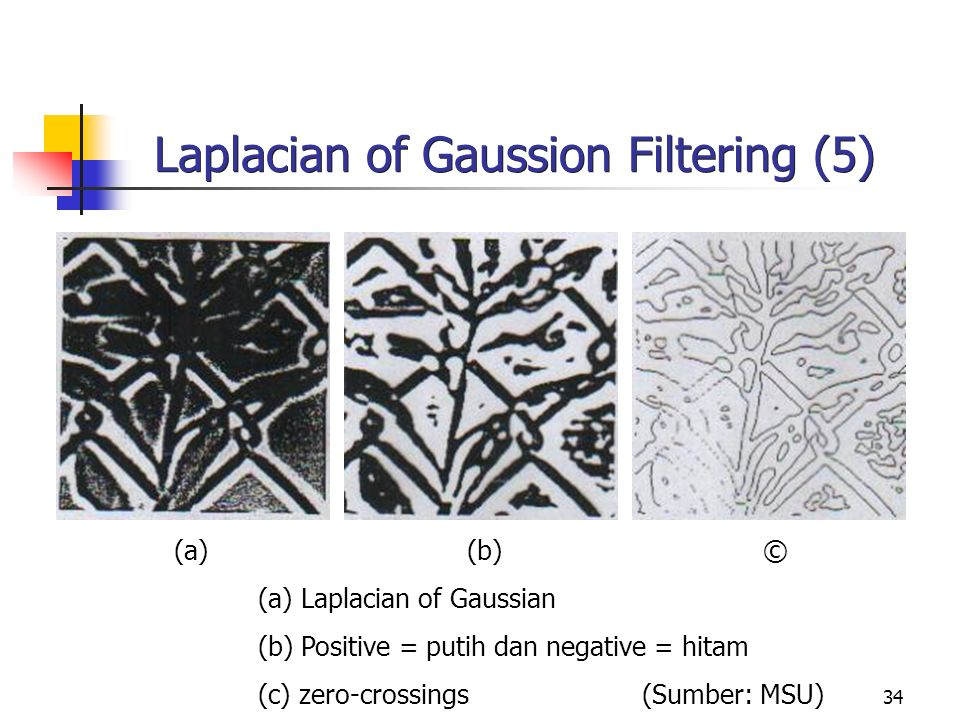 Laplacian of Gaussion Filtering (5)