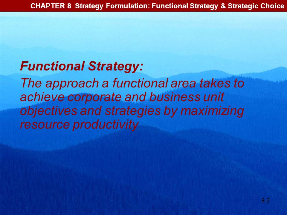 CHAPTER 8 Strategy Formulation: Functional Strategy & Strategic Choice