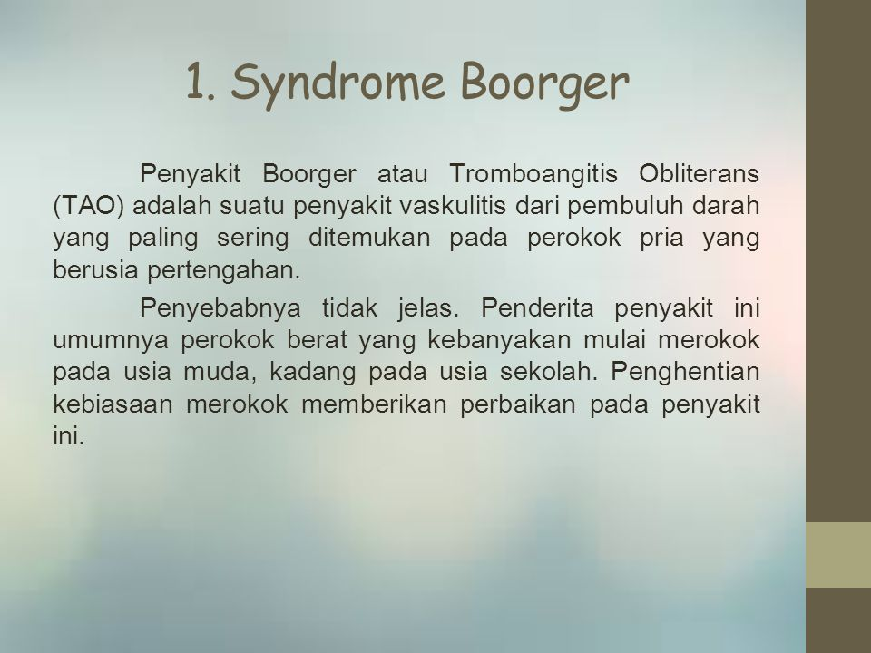 1. Syndrome Boorger