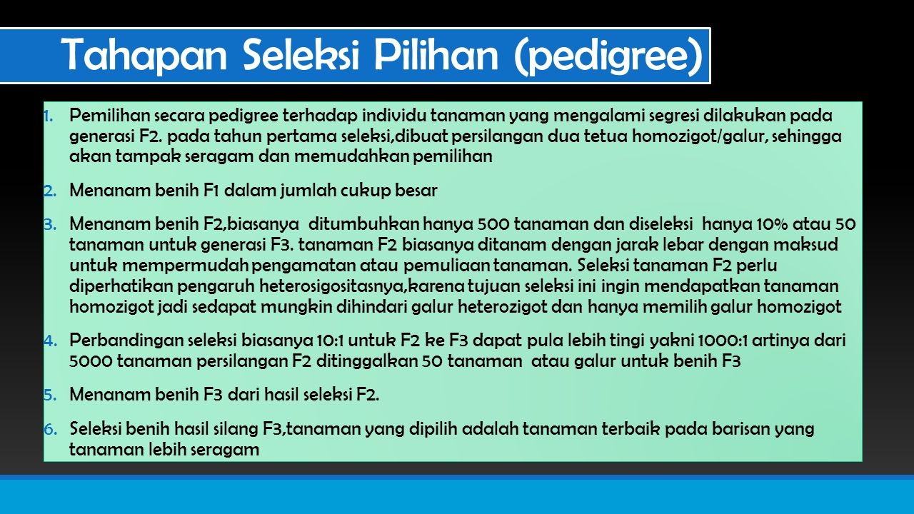 Tahapan Seleksi Pilihan (pedigree)