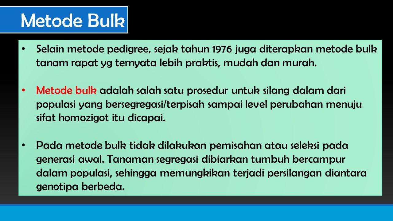 Metode Bulk Selain metode pedigree, sejak tahun 1976 juga diterapkan metode bulk tanam rapat yg ternyata lebih praktis, mudah dan murah.