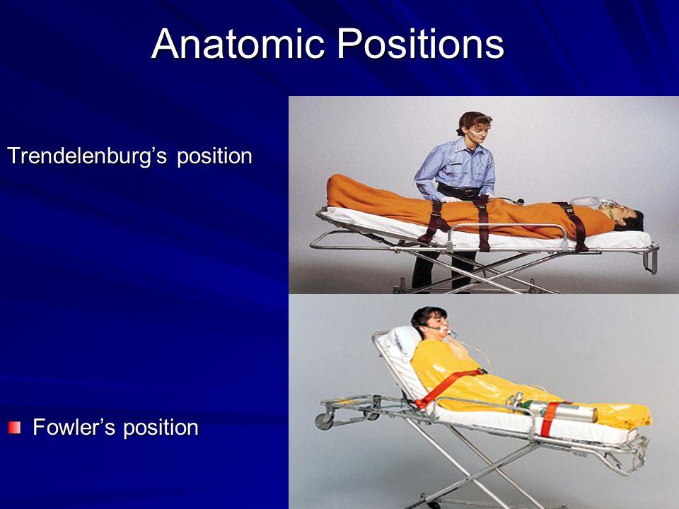 Anatomic Positions Trendelenburg's position Fowler's position