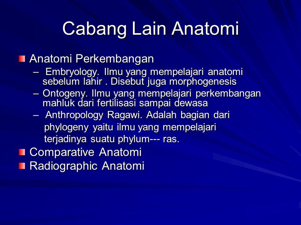 Cabang Lain Anatomi Anatomi Perkembangan Comparative Anatomi