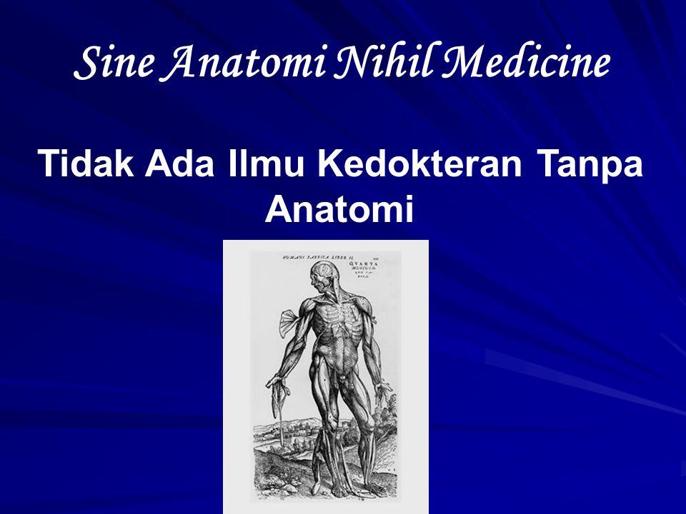 Sine Anatomi Nihil Medicine Tidak Ada Ilmu Kedokteran Tanpa Anatomi