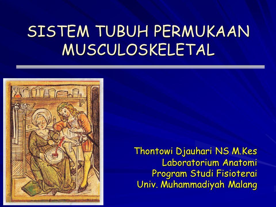 SISTEM TUBUH PERMUKAAN MUSCULOSKELETAL