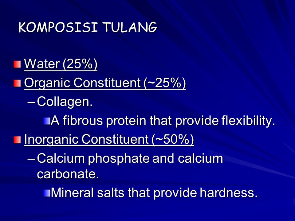 KOMPOSISI TULANG Water (25%) Organic Constituent (~25%) Collagen. A fibrous protein that provide flexibility.