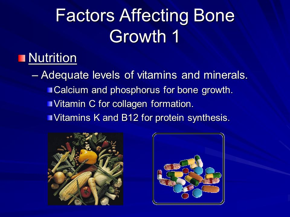 Factors Affecting Bone Growth 1