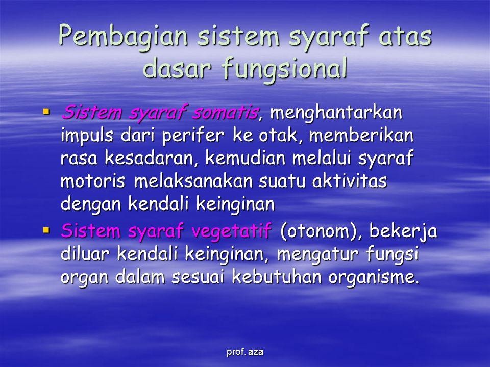 Pembagian sistem syaraf atas dasar fungsional
