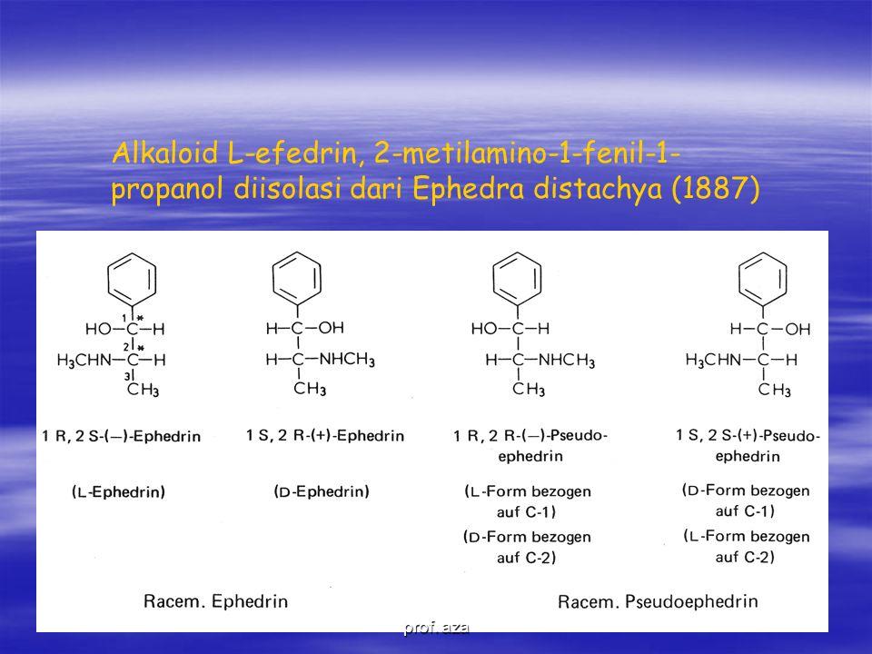 Alkaloid L-efedrin, 2-metilamino-1-fenil-1-propanol diisolasi dari Ephedra distachya (1887)