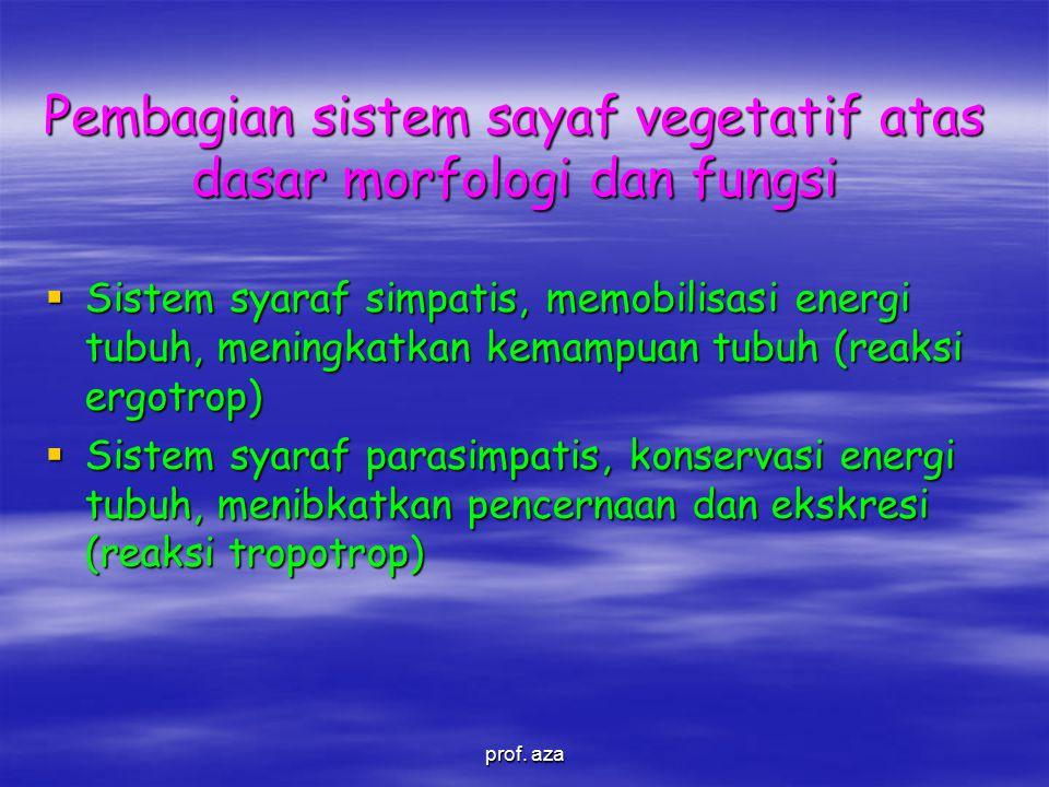 Pembagian sistem sayaf vegetatif atas dasar morfologi dan fungsi