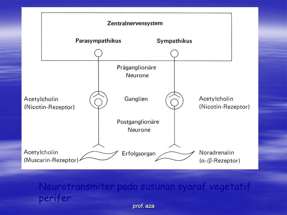 Neurotransmiter pada susunan syaraf vegetatif perifer