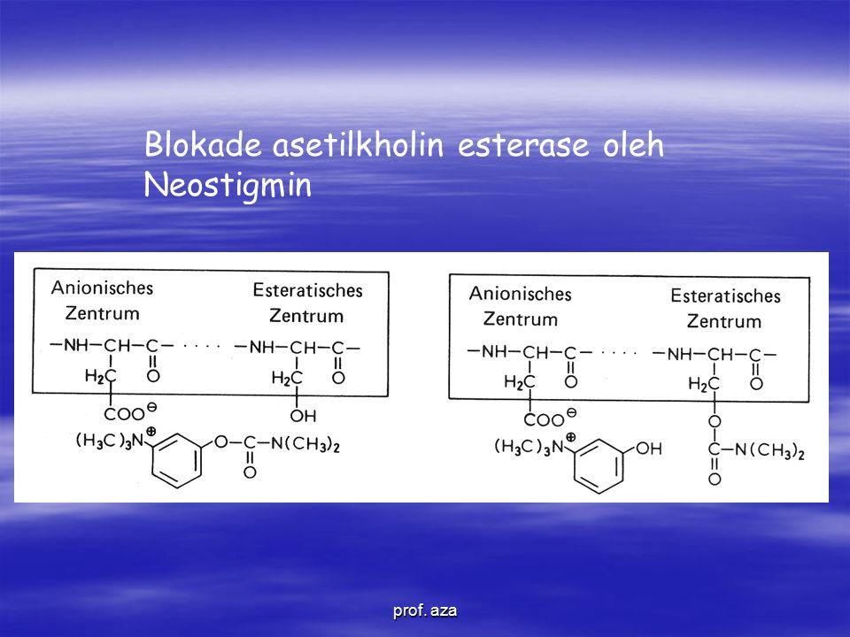 Blokade asetilkholin esterase oleh Neostigmin