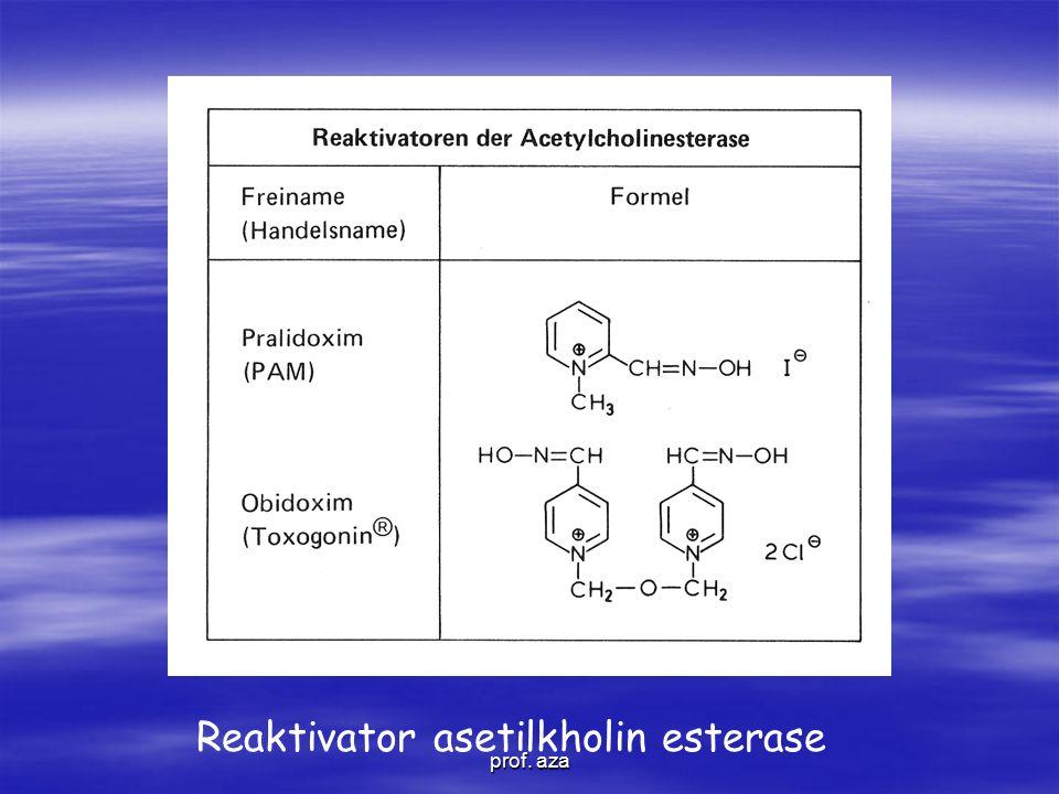 Reaktivator asetilkholin esterase
