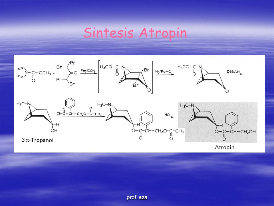 Sintesis Atropin prof. aza