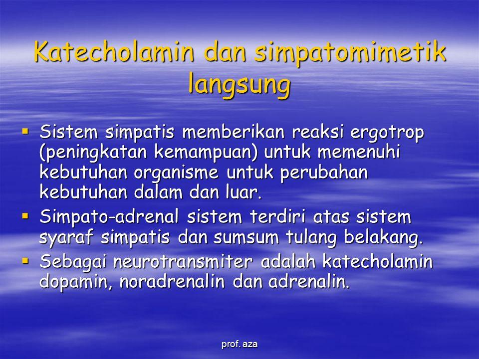 Katecholamin dan simpatomimetik langsung