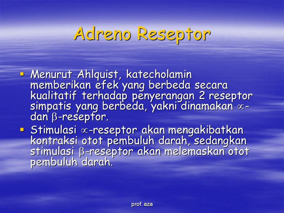 Adreno Reseptor