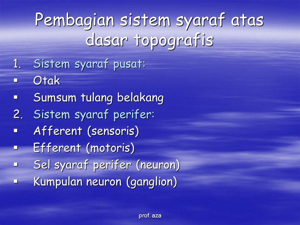 Pembagian sistem syaraf atas dasar topografis