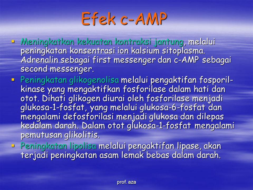 Efek c-AMP