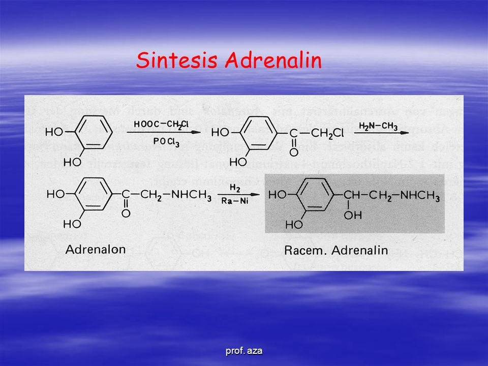 Sintesis Adrenalin prof. aza