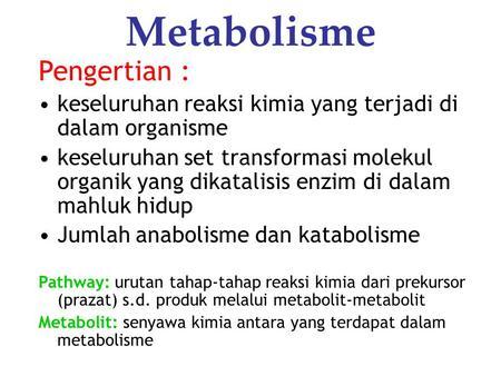 Pengertian Metabolisme hormon