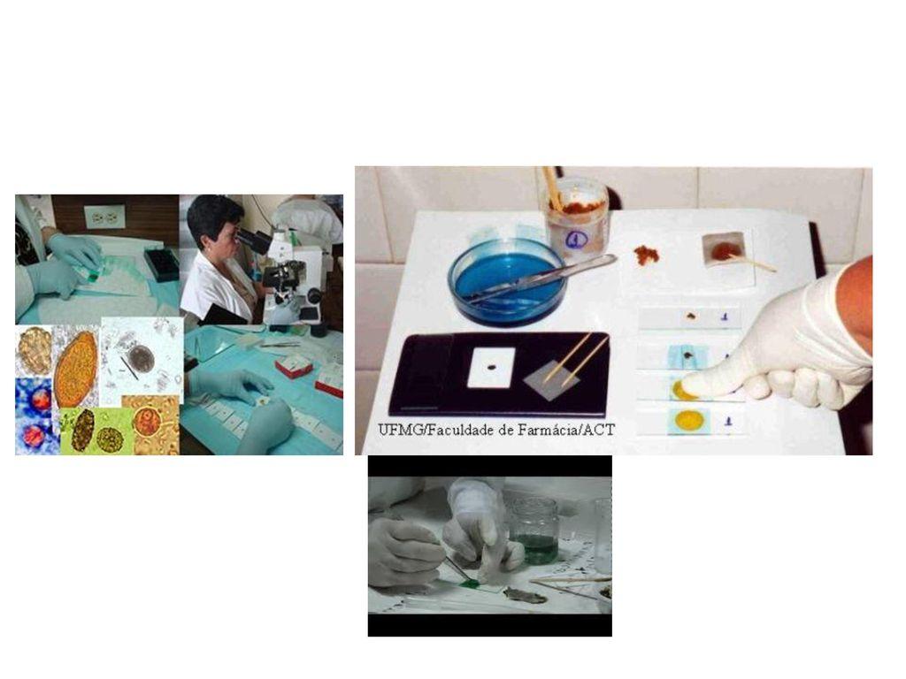 screening de invazie de helmint)