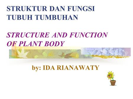 STRUKTUR DAN FUNGSI TUBUH TUMBUHAN STRUCTURE AND FUNCTION OF PLANT BODY by: IDA RIANAWATY.