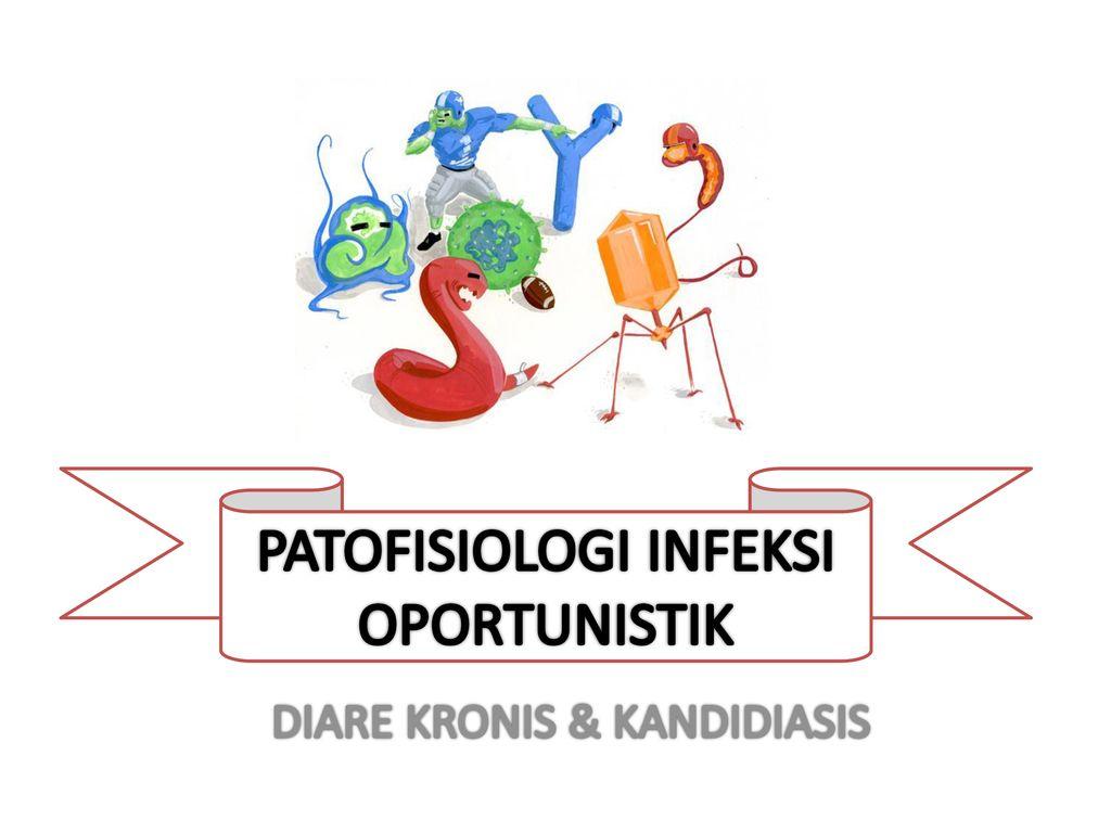 Bacterii oportuniste. Navigare principală