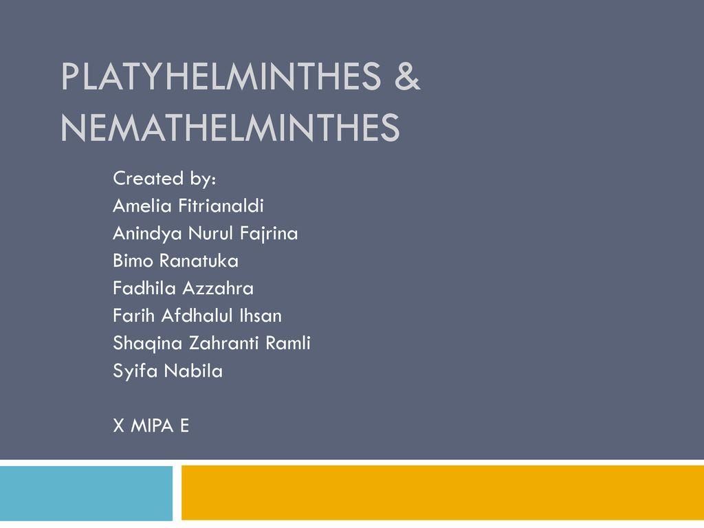 ppt platyhelminthes și nemathelminthes)