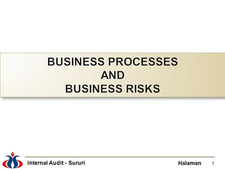 BUSINESS PROCESSES AND BUSINESS RISKS