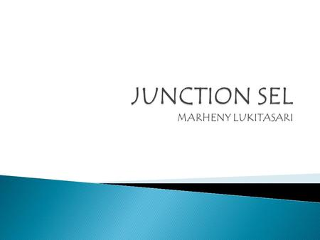 JUNCTION SEL MARHENY LUKITASARI