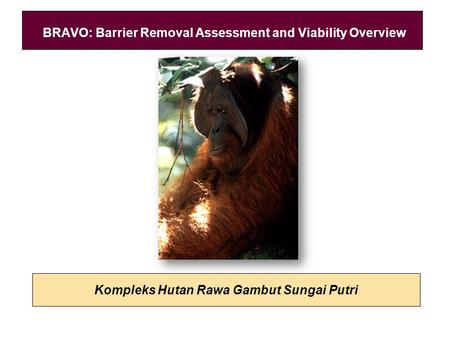 Kompleks Hutan Rawa Gambut Sungai Putri BRAVO: Barrier Removal Assessment and Viability Overview.