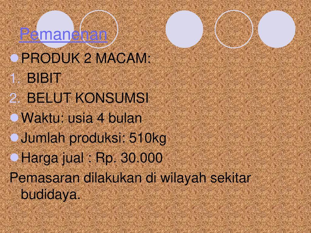 Teknik Pembesaran Budidaya Belut Sawah Monopterus Albus Ppt Download