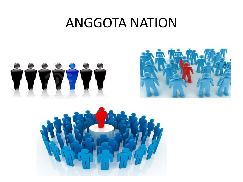 ANGGOTA NATION