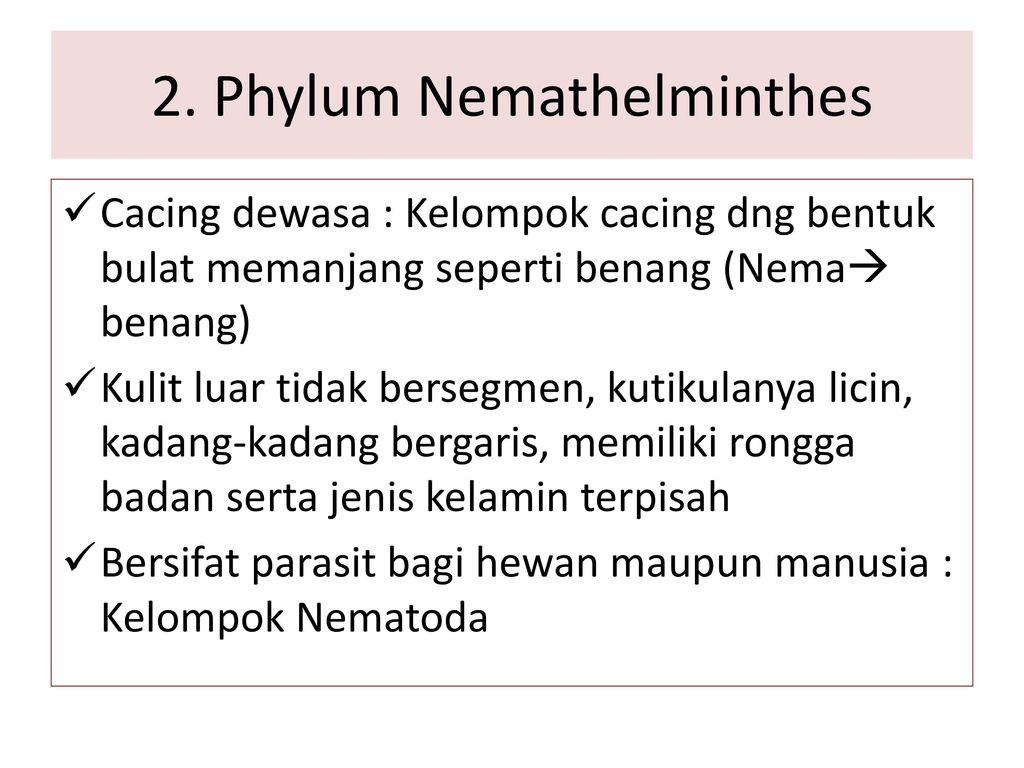 helminták fonálférgek cestodes trematodes jellemző