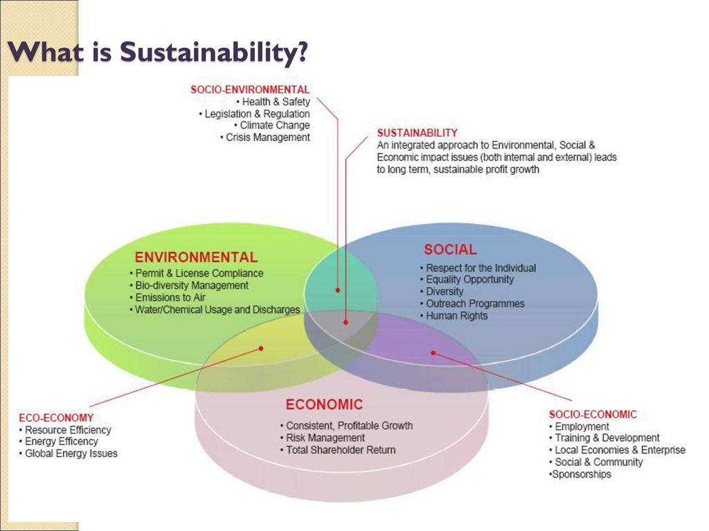 environment issues are too complex for Posts about socio-environmental issues written  has sustainability become too complex for  if the resolution of socio-environmental challenges is part.