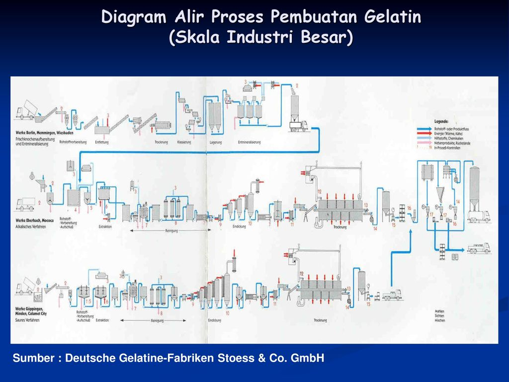 Protein reactions ppt download 97 diagram alir proses pembuatan ccuart
