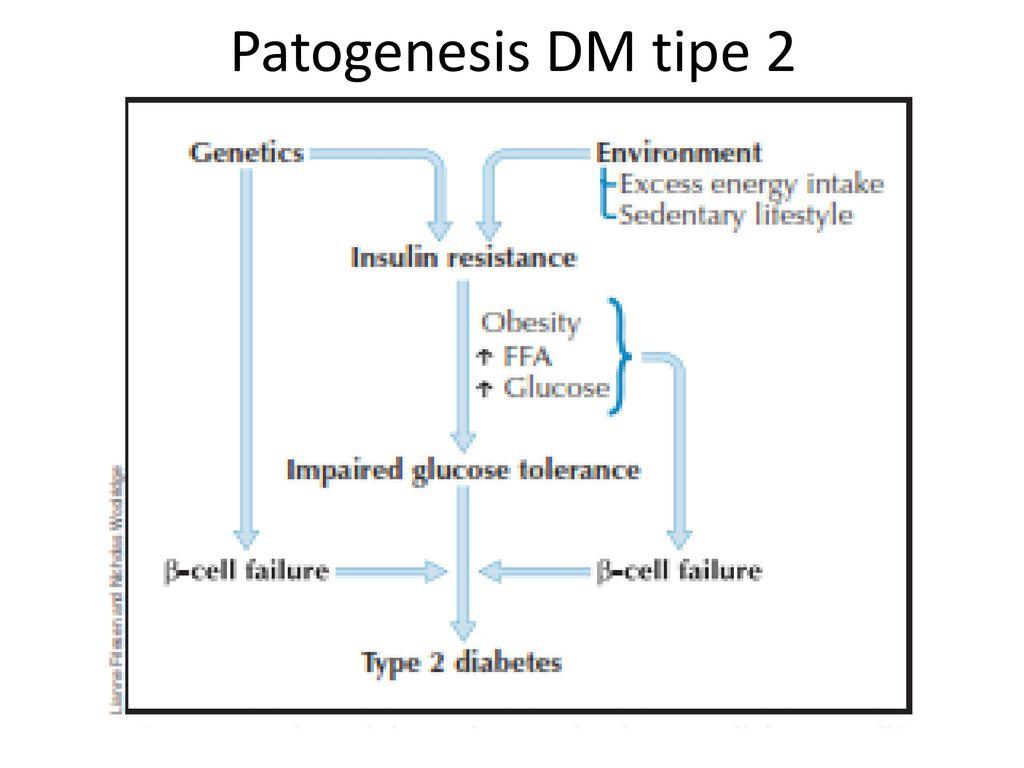 Etiologi Diabetes Melitus Tipe 2