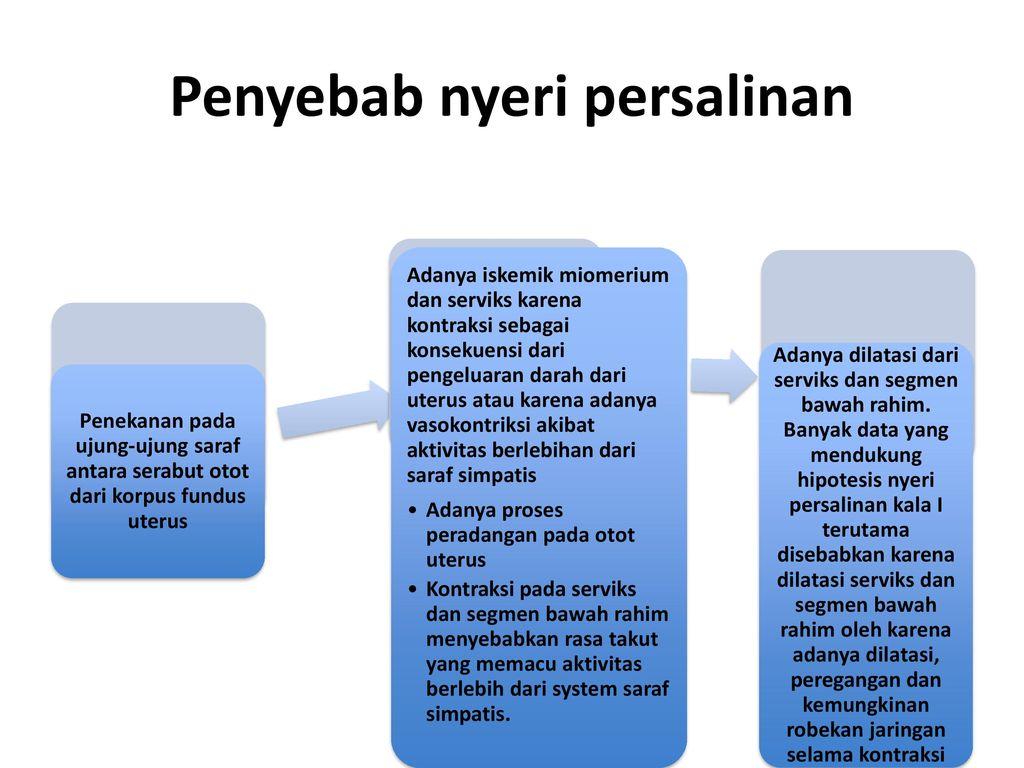 Prof Dra Setyowati Skp Mappsc Phd Ppt Download