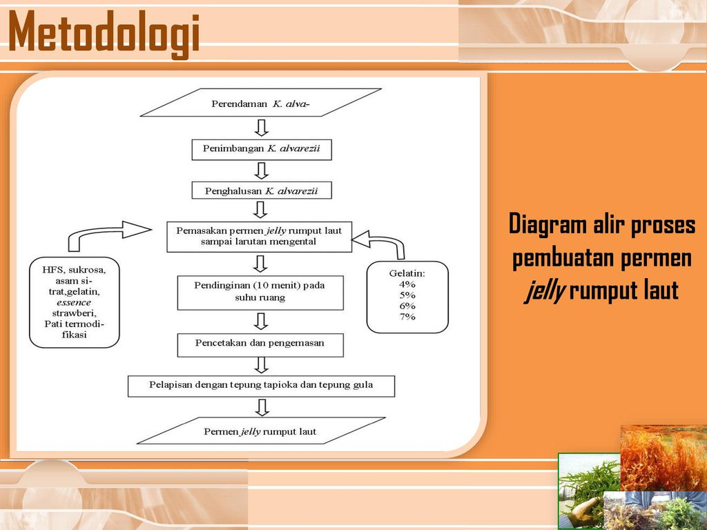 J e l l y candy ppt download diagram alir proses pembuatan permen jelly rumput laut ccuart