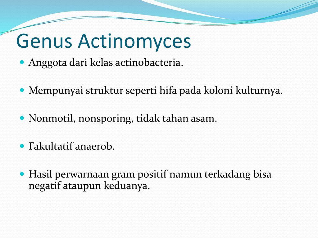 Eubacterium spp kenet férfiakban. Mágikus gyertyák metronidazollal, használati utasítás