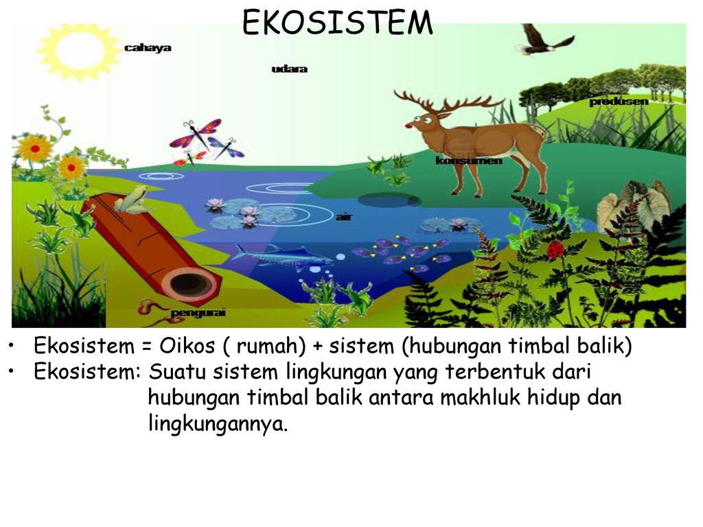 Manusia Dan Lingkungan Hidup Ppt Download
