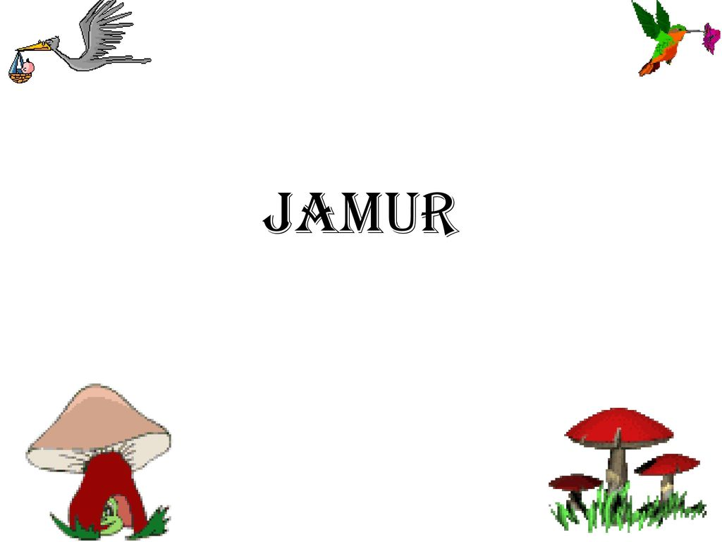 Koleksi 98 Gambar Animasi Bergerak Jamur HD Free Gambar