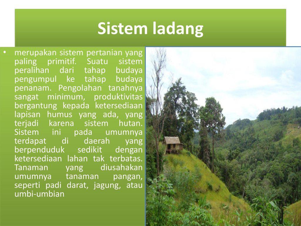 Sistem Pertanian Indonesia Ppt Download