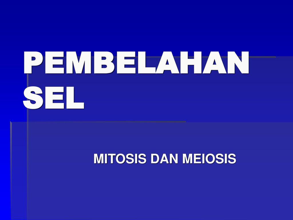 Pembelahan Sel Mitosis Dan Meiosis Ppt Download