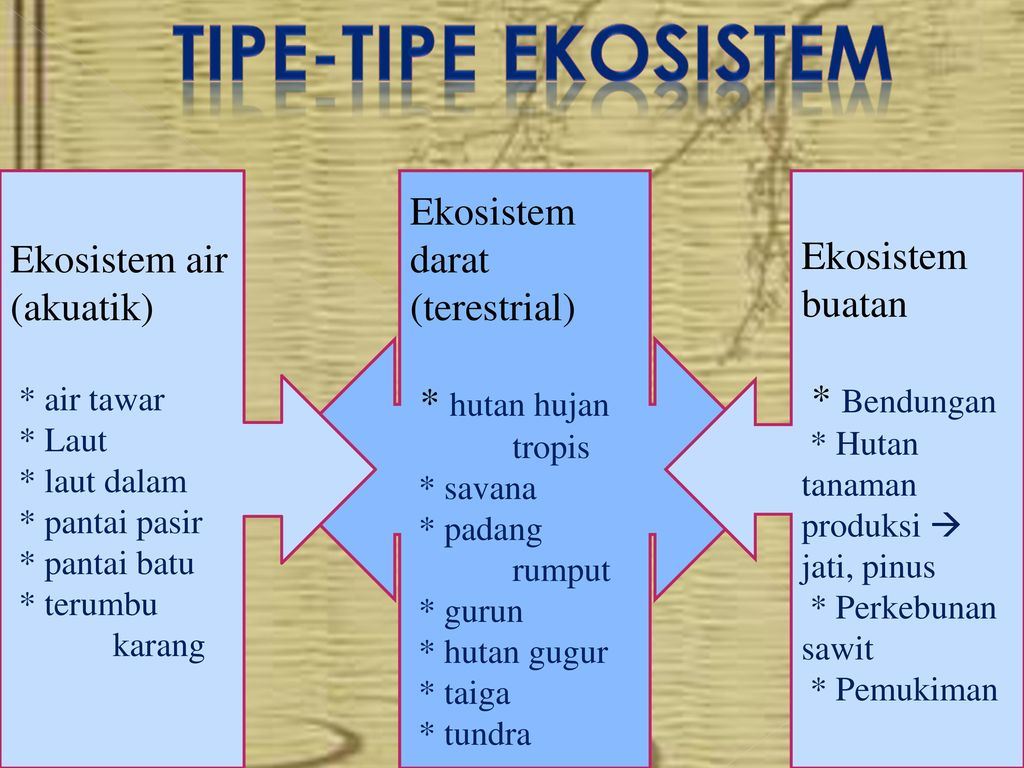 Ekosistem By Halimatusadiah Ppt Download